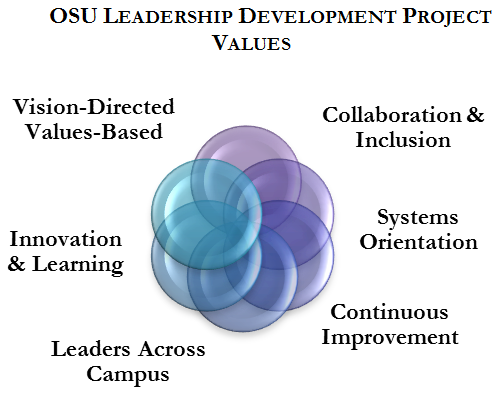 Leadership Develoment Project Values