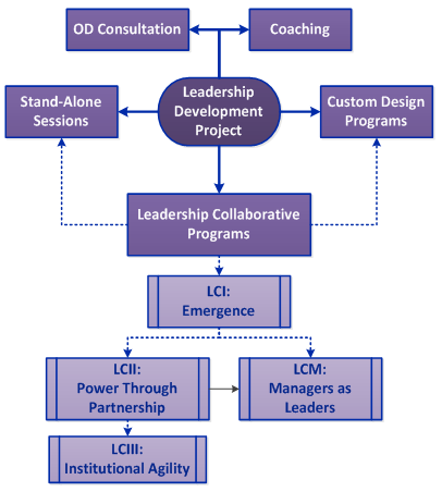 Leadership Development Project